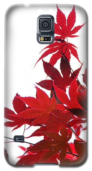 Red And White Galaxy S5 Case