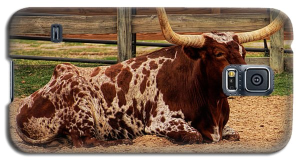 Red And White Texas Longhorn Galaxy S5 Case