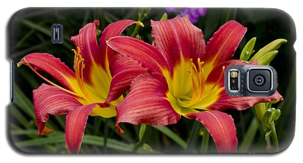 Galaxy S5 Case featuring the photograph Red And Yellow Lily by Maria Janicki