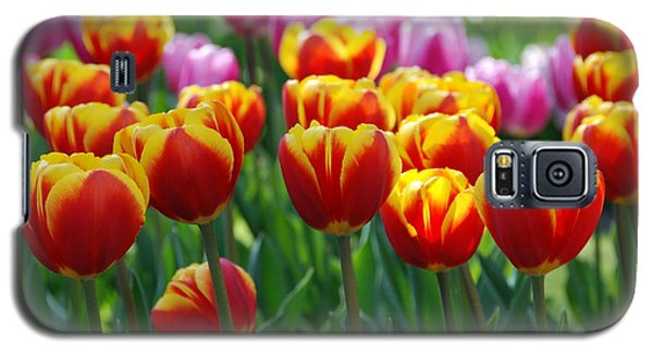 Galaxy S5 Case featuring the photograph Red And Yellow Tulips  by Allen Beatty
