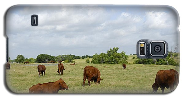 Galaxy S5 Case featuring the photograph Red Angus Cattle by Charles Beeler