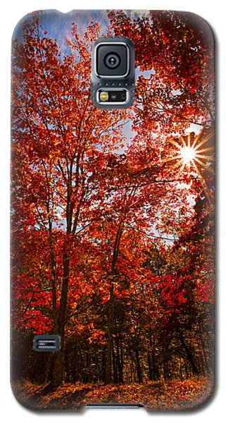 Galaxy S5 Case featuring the photograph Red Autumn Leaves by Jerry Cowart