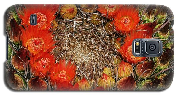 Galaxy S5 Case featuring the photograph Red Barell Cactus Flowers by Tom Janca