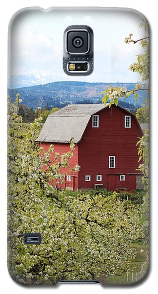 Galaxy S5 Case featuring the photograph Red Barn And Apple Blossoms by Patricia Babbitt