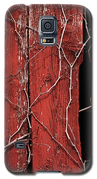 Galaxy S5 Case featuring the photograph Red Barn Wood With Dried Vines by Rebecca Sherman
