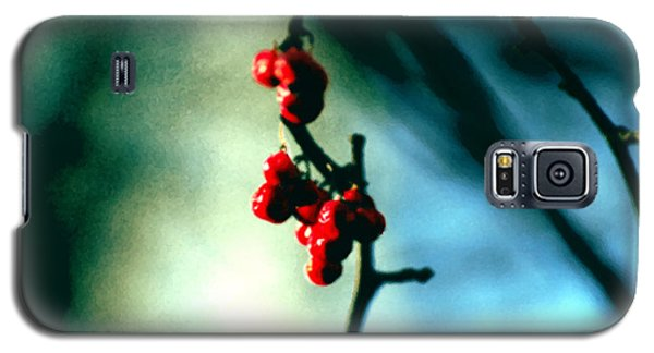 Red Berries On Canvas Galaxy S5 Case