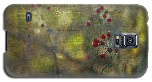 Red Berries On Green After Frost Galaxy S5 Case by Brooke T Ryan