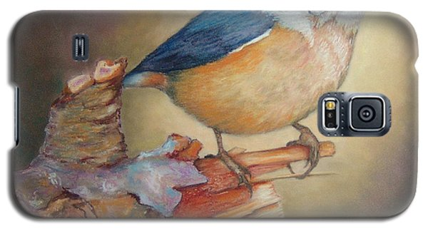 Red-breasted Nuthatch Bird Galaxy S5 Case