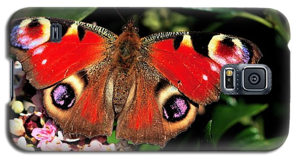 Red Butterfly In The Garden Galaxy S5 Case