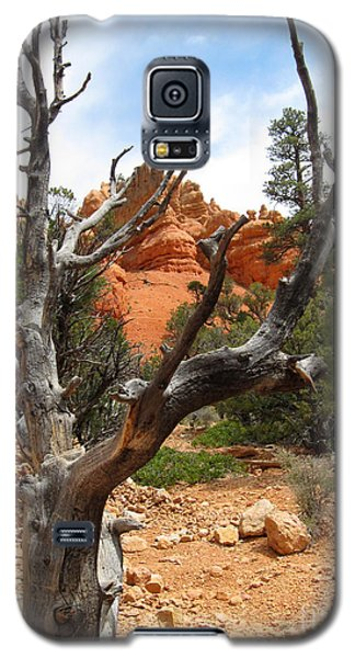 Red Canyon Tree And Rocks Galaxy S5 Case by Debra Thompson