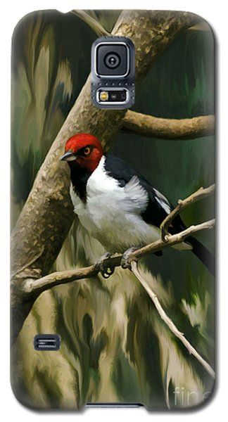 Galaxy S5 Case featuring the photograph Red-capped Cardinal by Adam Olsen