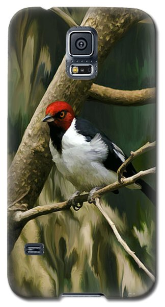Red-capped Cardinal Galaxy S5 Case by Adam Olsen