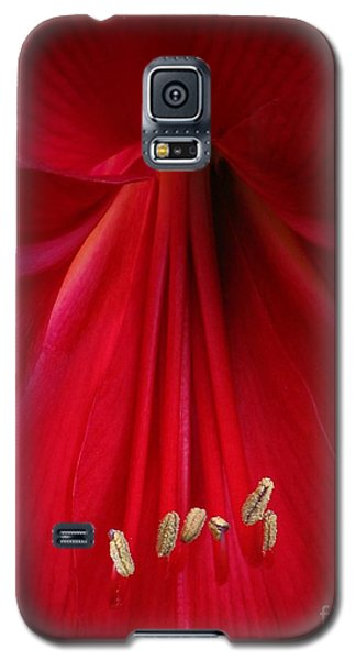 Red Galaxy S5 Case by Chris Anderson