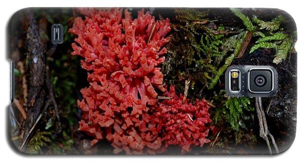 Red Coral Mushroom Galaxy S5 Case