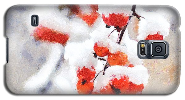 Red Crabapples In The Winter Snow - A Digital Painting By D Perry Lawrence Galaxy S5 Case