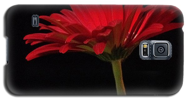 Red Daisy 2 Galaxy S5 Case