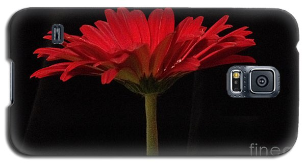 Red Daisy 4 Galaxy S5 Case