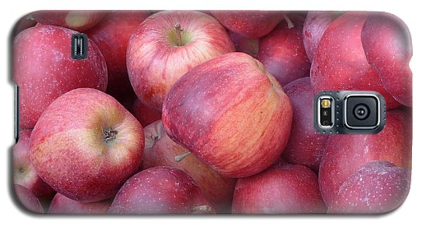 Galaxy S5 Case featuring the photograph Red Delicious by Joseph Skompski