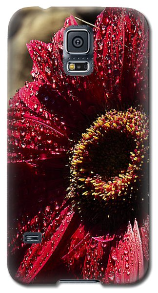 Galaxy S5 Case featuring the photograph Red Dew by Joe Schofield