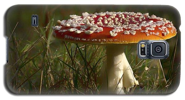 Red Fairy Mushroom Galaxy S5 Case