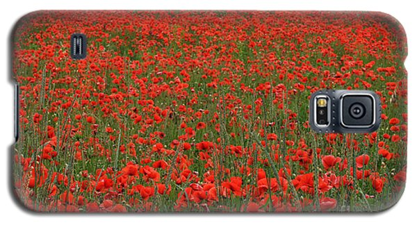 Red Field Galaxy S5 Case