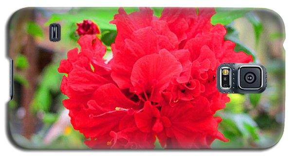Galaxy S5 Case featuring the photograph Red Flower by Sergey Lukashin