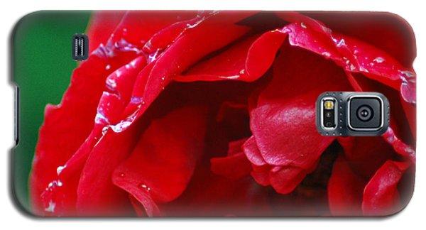 Red Flower Wet Galaxy S5 Case by Matt Harang