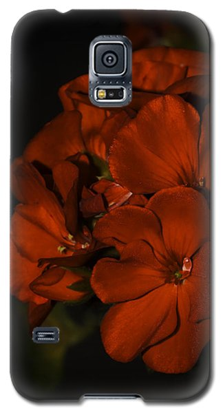 Galaxy S5 Case featuring the photograph Red Flowers In Evening Light by Lucinda Walter