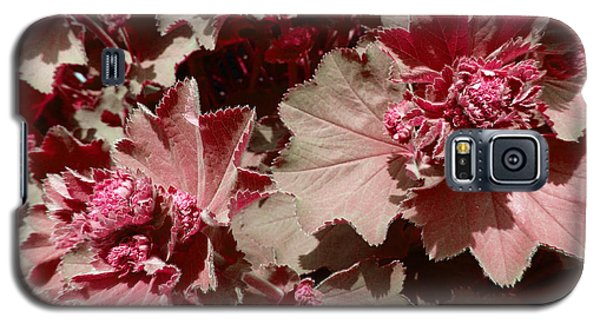 Galaxy S5 Case featuring the photograph Red Flowers by Laurie Tsemak