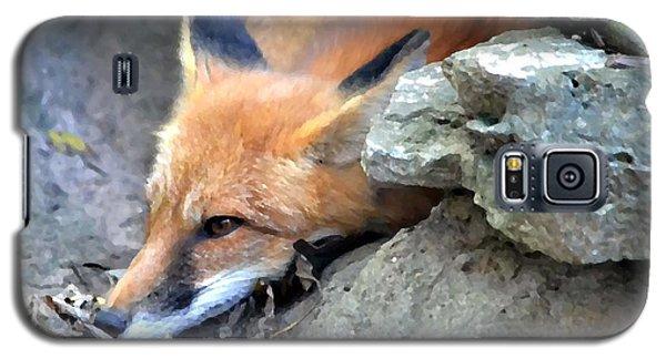 Red Fox Galaxy S5 Case by Deena Stoddard