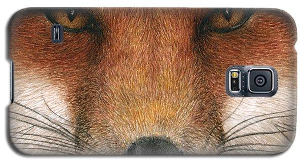 Red Fox Gaze Galaxy S5 Case