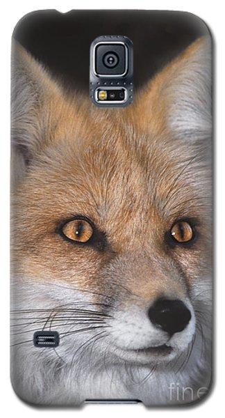 Red Fox Portrait Wildlife Rescue Galaxy S5 Case