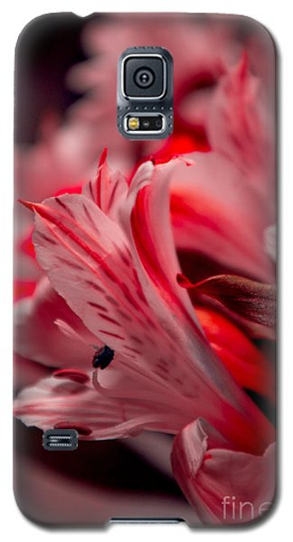 Red Freesia Galaxy S5 Case by Adria Trail