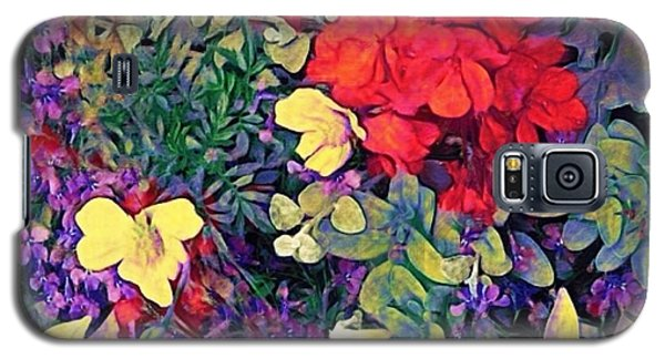Red Geranium With Yellow And Purple Flowers - Square Galaxy S5 Case