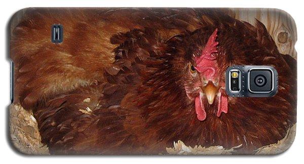 Red Hen Galaxy S5 Case by Pamela Walton
