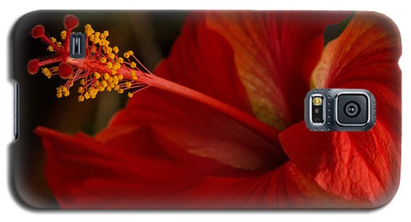 Red Hibiscus 4 Galaxy S5 Case