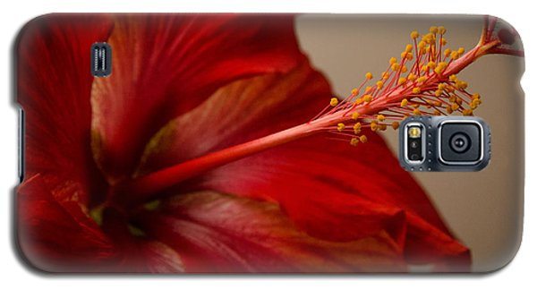 Red Hibiscus 5 Galaxy S5 Case