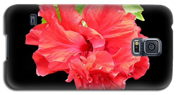 Galaxy S5 Case featuring the photograph Red Hibiscus On Black by Karen Nicholson