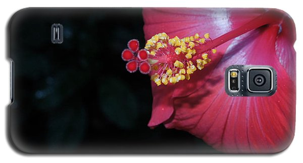 Galaxy S5 Case featuring the photograph Red Hibiscus by Ron Davidson