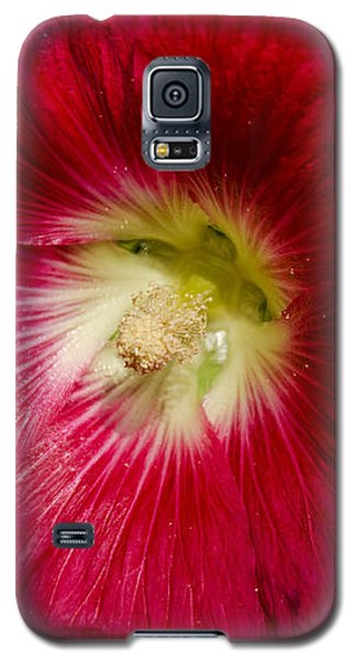Galaxy S5 Case featuring the photograph Red Hollyhock Althaea Rosea by Sue Smith