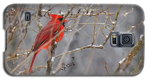 Red Hot In A Snowstorm Galaxy S5 Case