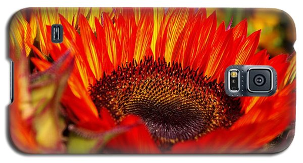 Red Hot  Galaxy S5 Case by John S