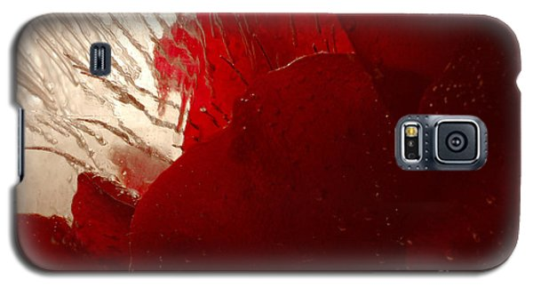 Red Ice Galaxy S5 Case