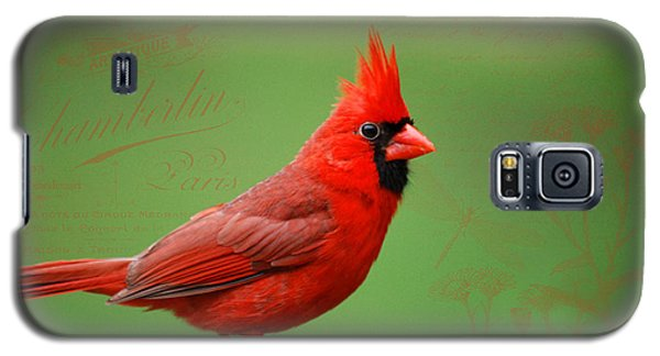 Red It Is Galaxy S5 Case by Linda Segerson