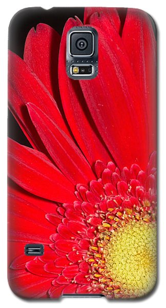 Red Joy Galaxy S5 Case