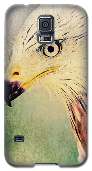 Red Kite Art Galaxy S5 Case