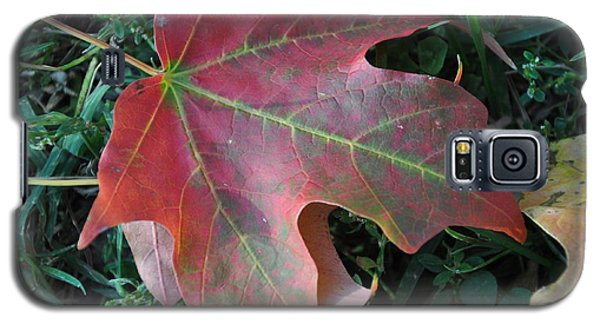 Red Leaf Galaxy S5 Case
