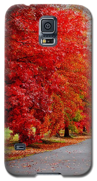 Red Leaf Road Galaxy S5 Case
