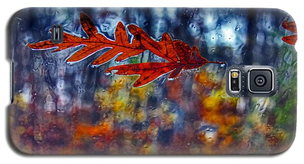 red leaves on windshield Dry Brush Galaxy S5 Case by Andy Lawless