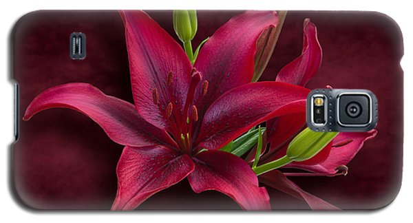 Red Lilies Galaxy S5 Case by Jane McIlroy